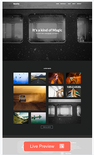 Beetle - Flat Responsive WordPress Theme